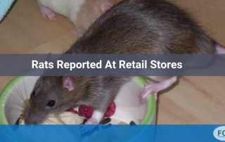rats reported at retail stores