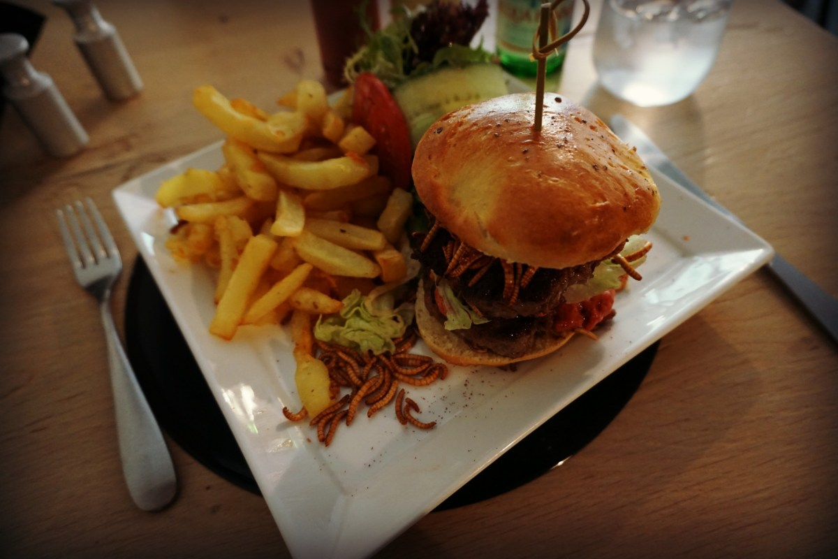 insectenburger oostende cook & roll