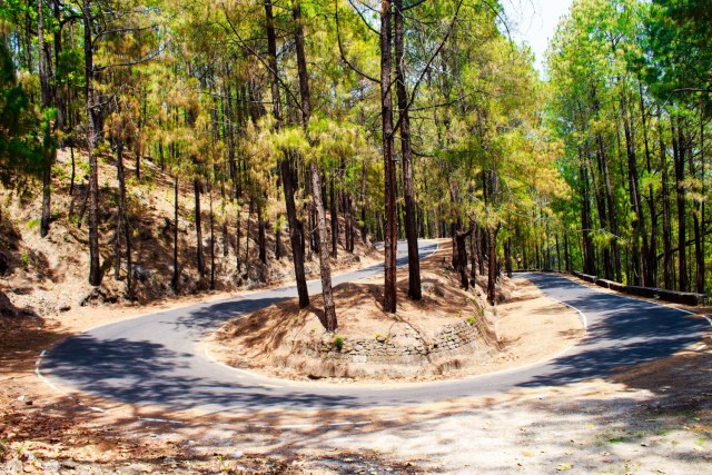 curvy roads lansdowne