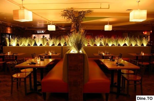 Safari Bar & Grill Opening Times in Ajax, ON