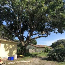 tree services in vero beach - yelp