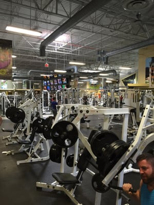 Planet Fitness Dr Phillips : planet, fitness, phillips, Gold's, Photos, Reviews, Turkey, Phillips,, Orlando,, Phone, Number