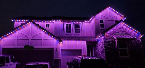 Whole Home Jellyfish Lighting-[Videos]