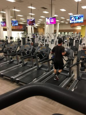 La Fitness San Marcos : fitness, marcos, Exercise, Programs, Marcos,, MapQuest