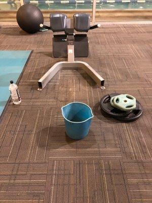La Fitness Graceland : fitness, graceland, ESPORTA, FITNESS, Photos, Reviews, Graceland, Blvd,, Clintonville,, Columbus,, United, States, Phone, Number