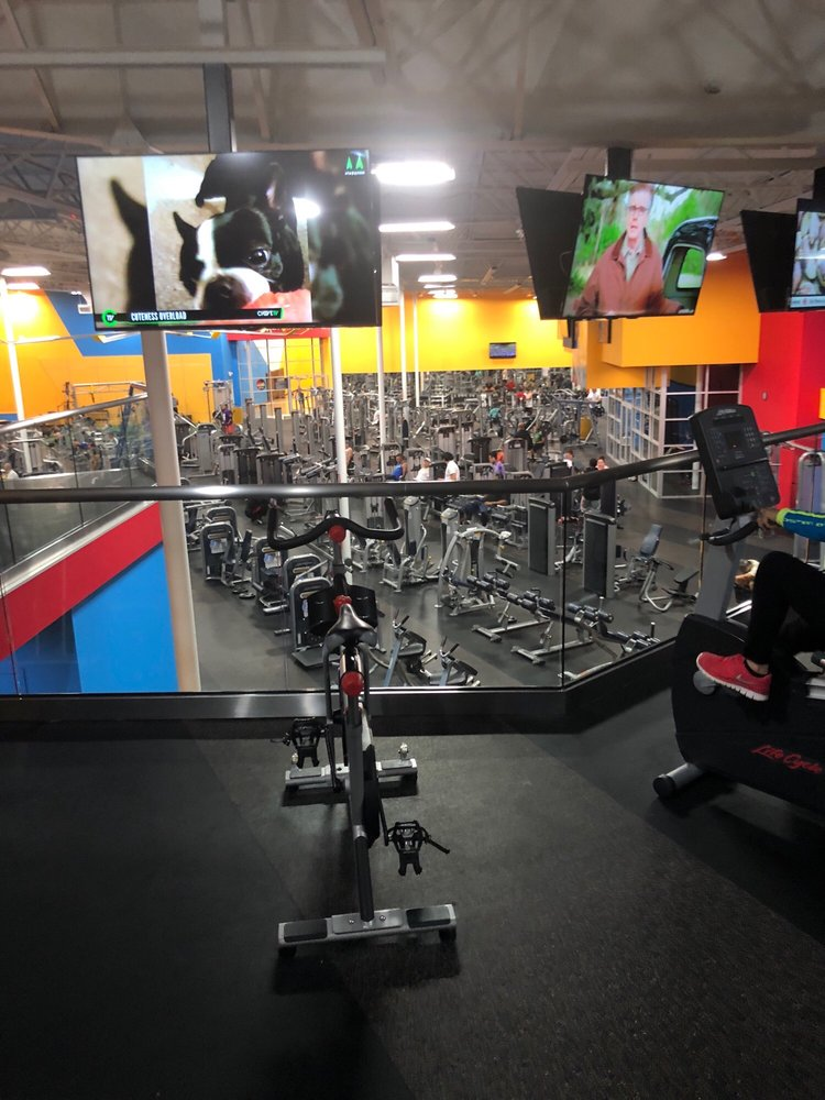 Fitness Connection Bissonnet : fitness, connection, bissonnet, Fitness, Connection, Bissonnet, Photos, Reviews, Sharpstown,, Houston,, Phone, Number