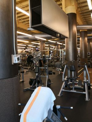 Xsport Fitness Near Me : xsport, fitness, XSPORT, FITNESS, Photos, Reviews, Ashland, Lakeview,, Chicago,, United, States, Phone, Number