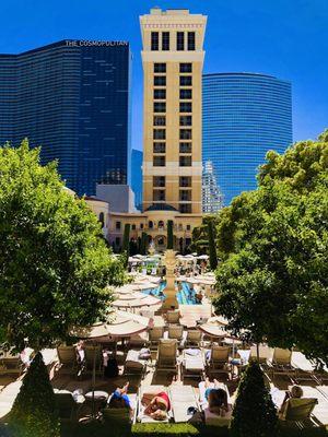 TangTangTang Opening Times in Las Vegas, NV