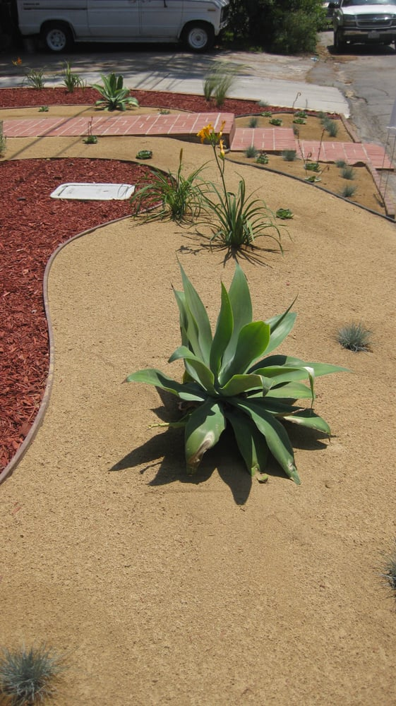 decomposed granite and drought
