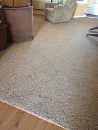 Mohawk SmartStrand DuPont Sorona Carpet
