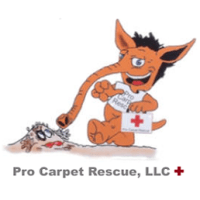 Photos for Pro Carpet Rescue - Yelp
