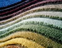 Carpet Installation San Francisco - Download Free Apps ...