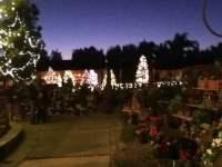 Rogers Garden at Christmas - Yelp