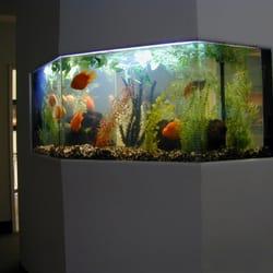 l a home aquariums