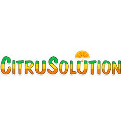 Citrus Carpet Cleaning Reviews Lets See Carpet New Design