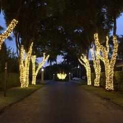 christmas lights miami # 21