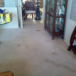 New Look Cleaning  21 Photos  Carpet Cleaning  Phoenix
