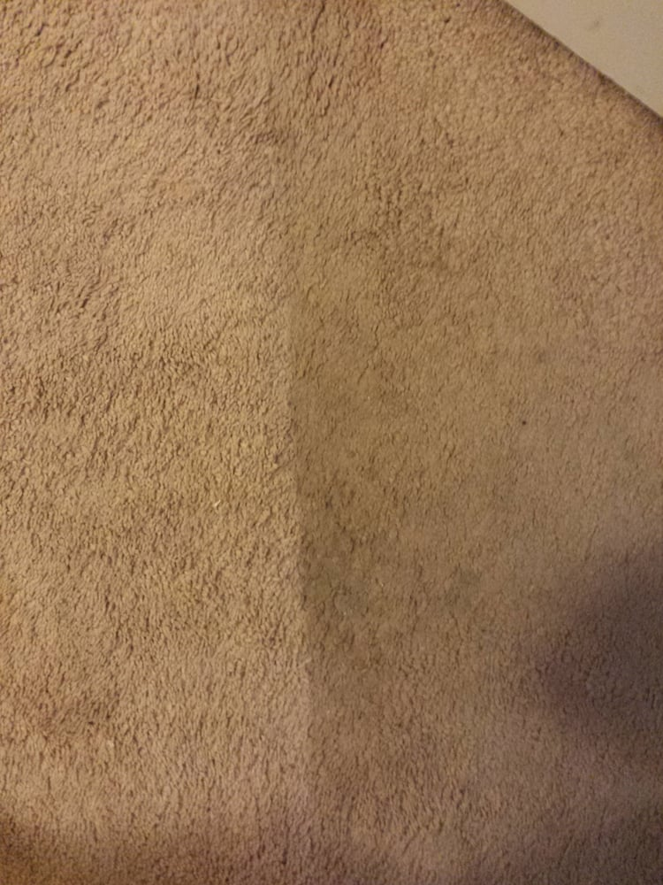 ACS Carpet  Upholstery Cleaning  Carpet Cleaning  Stockton CA  Phone Number  Last Updated