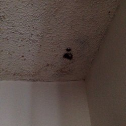Photo Of Sun Village Apartments Albuquerque Nm United States Its Been Like