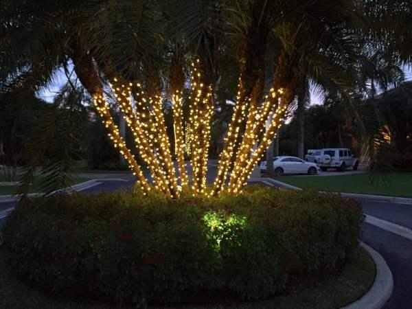 christmas lights miami # 58