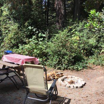 Emerald Forest Cabins  RV  111 Photos  115 Reviews  RV