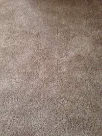 Alpine Carpet One Floor & Home - 10 -  - 2636 East ...