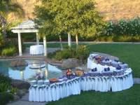 Backyard Wedding Buffet | Yelp