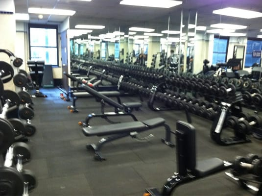 Bench Set Up In The Dumbbell Area  4th Fl Weight Room  Yelp