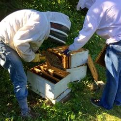 Gaiser Bee Co - Honey - 3402 Kleeman Rd Cincinnati OH ...