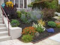 Low maintenance drought tolerant front yard - Yelp