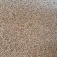 All Out Carpet & Tile Cleaning - 12 Photos & 41 Reviews ...