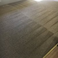 Evergreen Carpet Care