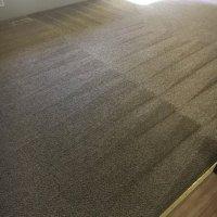 Evergreen Carpet Care - 35 Photos & 74 Reviews - Carpet ...