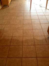 Photos for Trust Carpet & Tile Cleaning - Yelp