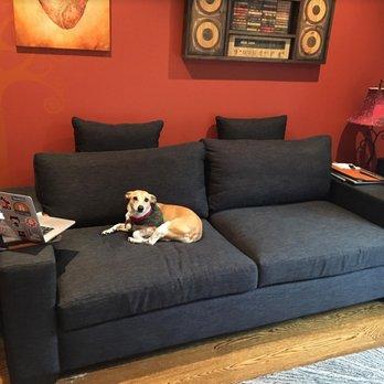 sofa sleeper san francisco leather black furniture envy 132 photos 186 reviews stores 2240 photo of ca united states izzy dog enjoying