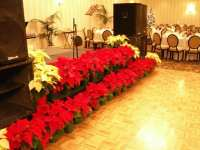 Christmas Party Stage Decorations