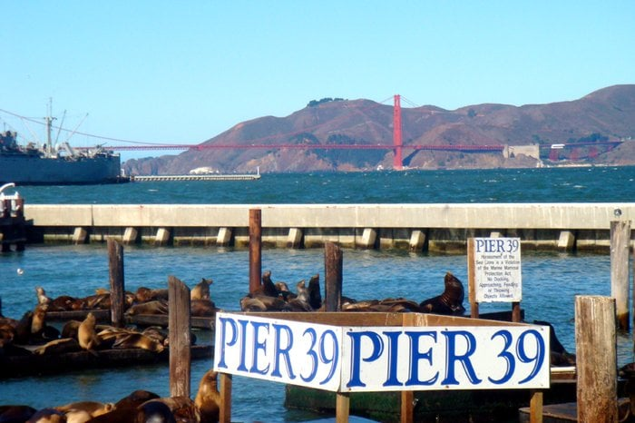 Wharf Fishermans Restaurants San Francisco