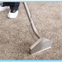 Carpet Cleaner Kingwood - Angebot erhalten ...