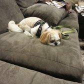 Photo Of Highland Park Furniture Mattress Outlet Tampa Fl United States