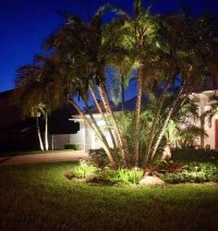 Photos for Tropical Landscape Lighting - Yelp