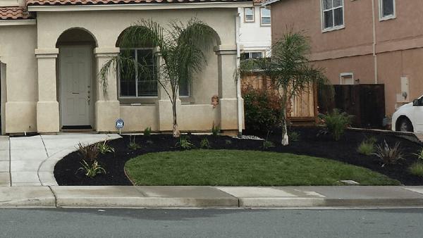 Landscape Design 94513