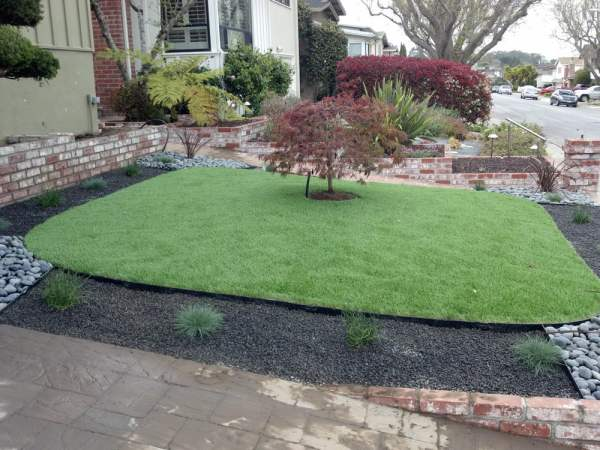 artificial grass drought tolerant