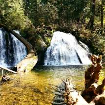 Duvall Cherry Creek Falls Trail WA