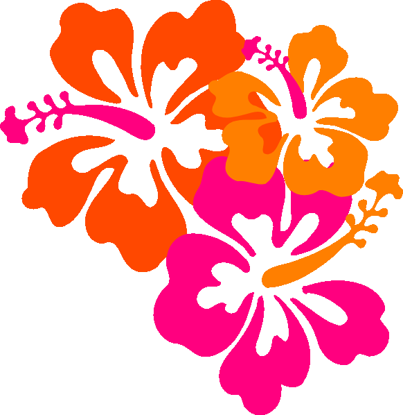 mahalo cleaning & services - home