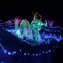 garden of lights at