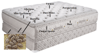 Carpet Pro Care - FERM - Tapis & Moquette - Sterling, VA ...