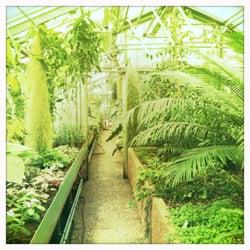Botanischer Garten Der Universität Des Saarlandes CLOSED