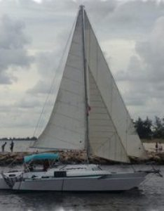 Photo of zephyr charters nokomis fl united states venice jetty also boat phone number yelp rh