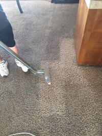 Photos for Tuff Carpet Cleaning - Yelp