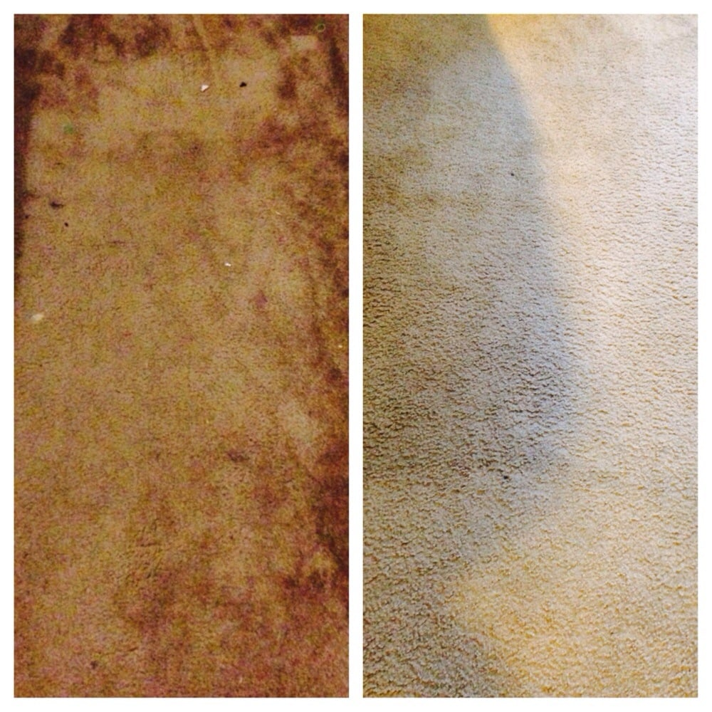 AAA Bright Carpet Cleaning